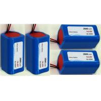CE Standard Rechargeable Lithium Batteries / Li Ion Battery Pack Rapid Charge