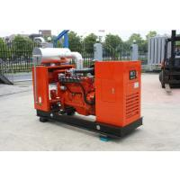 Best 120KW Cummins Natural Gas Generator With Brushless Synchronous Alternator Powered wholesale