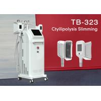 Best Fat Freeze Cryolipolysis Slimming Machine 4 Handles Belly Fat Removal Machine 1800W wholesale