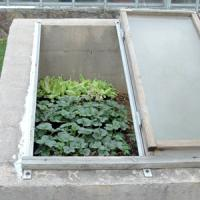 Best compact cold frame with UV protected panels wholesale