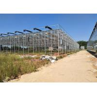 Best Venlo Glass Greenhouse , Multi Span Greenhouse For Hydroponics System wholesale