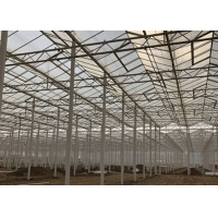 Best Sided Ventilated Cooling Pad Multi Span Pc Sheet Greenhouse wholesale