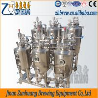 Best 50L small home brewery mini beer brewing equipment wholesale