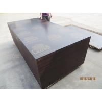 CROWN BRAND FILM FACED PLYWOOD, COMBI CORE, WBP GLUE。good quality low price CROWN  brand film faced plywood