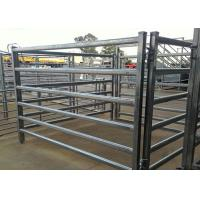 Best Power Coated Metal Cattle Yard Panels Each Weld Protected With Epoxy Paint wholesale