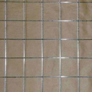 Best 1/4-inch Electro-galvanized Welded Wire Mesh wholesale