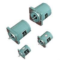 China TDY series 55TDY4 permanent magnet low speed synchronous motor on sale