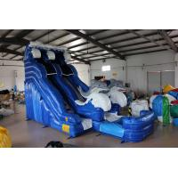 Best Dolphin Inflatable Water Slide For kids wholesale