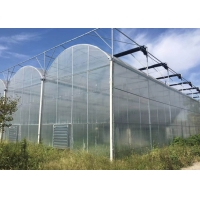 Best Agricultural Multi Span 10m 200 Micron Ldpe UV Film Greenhouse wholesale