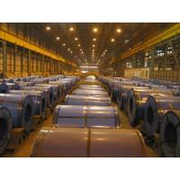 Best Custom Cut Deep Drawing Cold Rolled Steel Coils SPCD / SPCE / DC03 wholesale