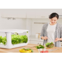 Best Home Lettuce PP 24V Greenhouses Hydroponic Growing Systems wholesale