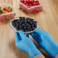 China Disposable Blue Food Prep Nitrile And Latex Gloves on sale