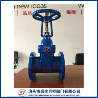 China Cast Iron Rising Stem Wedge resilient Seated Gate Valve on sale