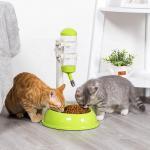 Best Detachable Automatic Pet Food Dispenser Customized Logo Plastic Material wholesale