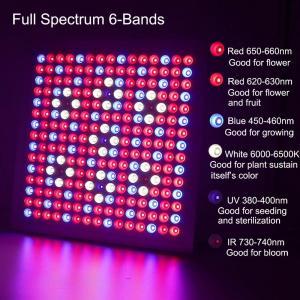 Best Waterproof Full Spectrum LED Grow Lights With 660nm - 450nm Wavelengh wholesale