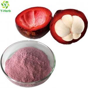 Best 100% pure organic concentrate mangosteen fruit powder/mangosteen juice powder wholesale