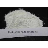 CAS 15262-86-9 Testosterone Anabolic Steroid Testosterone Isocaproate For Muscle Gaining