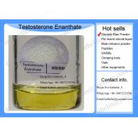 Best Injectable Testosterone Enanthate Powder , Pproviron Bodybuilding For Androgen Deficiencies wholesale