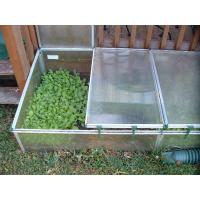 Best cold frame with white color wholesale