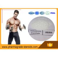 Best Cycling Anabolic Testosterone Steroid Hormone Enanthate CAS 315-37-7 For Bodybuilding wholesale