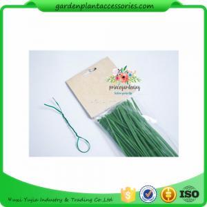 Best Green Tree Climbing Garden Plant Ties , Plastic Tree Support Ties wholesale
