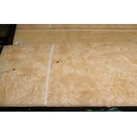 Best Yellow Burl Wood Veneer wholesale