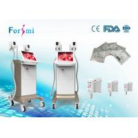 China cryogenic equipment 1800 W Cryolipolysis Slimming Machine FMC-I Fat Freezing Machine on sale