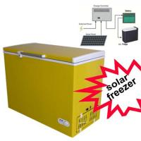 China BD/BC-158DS 158L Hot Sales Solar Freezer Solar Energy Systems on sale