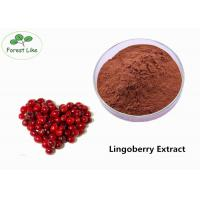 Best Pure Natural Lingonberry Extract Powder 30% Proanthocyanidins For Food Additive wholesale