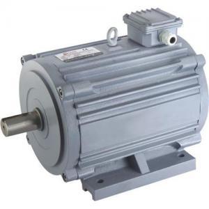 Best Horizontal Electric Motor wholesale