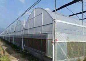 Best Hot Galvanized Frame Dome Lettuces Plastic Cover Greenhouse wholesale