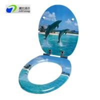 China Original factory sale of Custom designed novelty printed toilet seat with soft close hinges-European & US Standard on sale