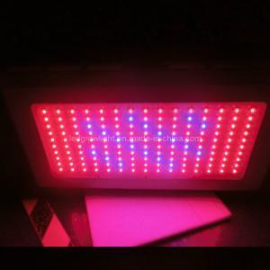 150W LED Grow Light (WL-BF150A8101)