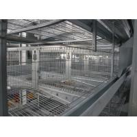 Best A Frame Commercial Poultry Equipment Poultry Shed Customized Size wholesale