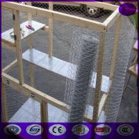 China 48 x 150' ft 1 Mesh Galvanized Poultry Netting Chicken Wire Fence on sale