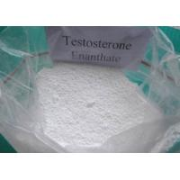 Best Effective Testosterone Enanthate powder and Injectable liquid for Muscle Building CAS 315-37-7 wholesale