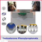 Best 99% Puriy Testosterone Phenylpropionate Steroid Powder CAS 1255-49-8 wholesale