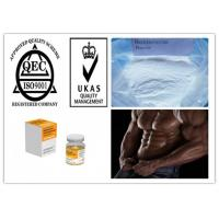 Best Most Popular Steroid Boldenone Base Raw Powder for Muscle and Strength Growth wholesale