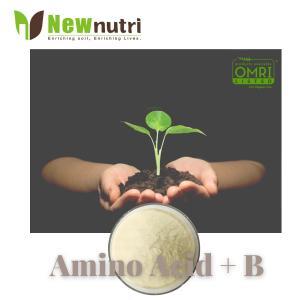 China Powder 100% Soluble Chelated B Amino Acid Fertilizer For Plants on sale