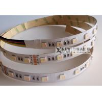Best RGB and CCT Adjustable five in one LED 5 in 1 all color with dual white DC12V DC24V RGBCCT LED Strip Light wholesale