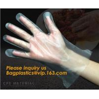 Best Disposable Plastic Polythene PE Gloves Cleaning Prepare Food,STERILE TWO FINGER GLOVES IN POLYETHYLENE, small packing PE wholesale