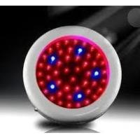 Best Red blue yellow 50W 300MA led plant growing light Systems 85 - 264V for hydroponic wholesale