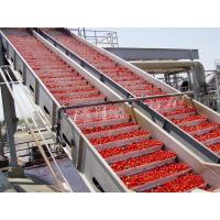 Best PLC Control Food Processing Machine Tomato Processing Line Water Cycling wholesale
