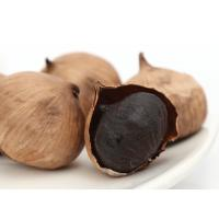 Best Leaf Part Plant Extract Powder Odorless Black Garlic Extract ISO9001 / GMP wholesale