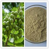 Best Natural Sapindus Extract Lower Blood Pressure 70% Saponin wholesale