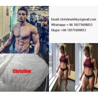 Best 15262-86-9 Testosterone Steroid Hormone Testosterone Isocaproate For Muscle Building wholesale