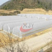 Best Agricultural Single Span Plastic Film Greenhouse Agricultural Single Span Greenhouse wholesale