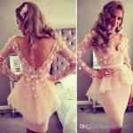 Best V Neck Short Evening Party Dresses Long Sleeve Short Ivory Lace Flower Knee Length wholesale
