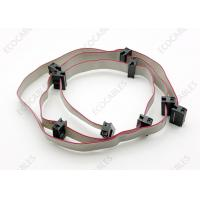 China TM-6214-LF Flat Ribbon Cables Assembly CP 10 Pin Data Cable Assy With 1658621-1 on sale