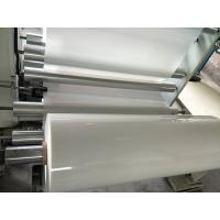 Best 6023D MILKY WHITE PET POLYESTER FILM can available printing wholesale